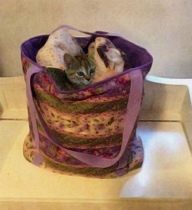 ZuZu in Quilt Bag