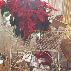 Poinsettias and Gifts at Federal House Inn